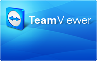 Remote support online via Teamviewer